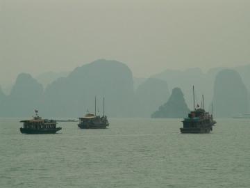 medium_vietnam1_110.jpg