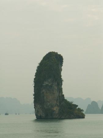 medium_vietnam1_141.jpg