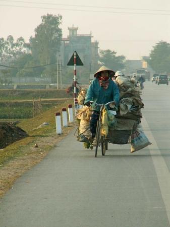 medium_vietnam1_201.2.jpg