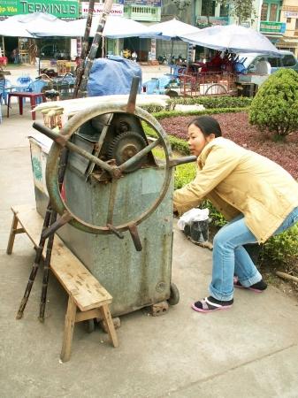 medium_vietnam1_334.jpg