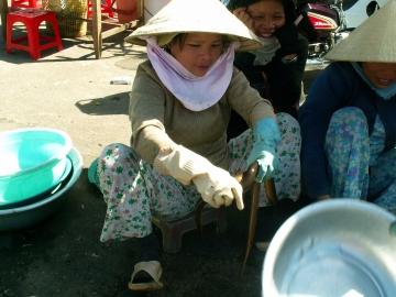 medium_vietnam3_435.jpg