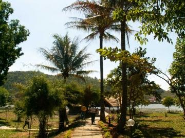 medium_vietnam3_636.jpg