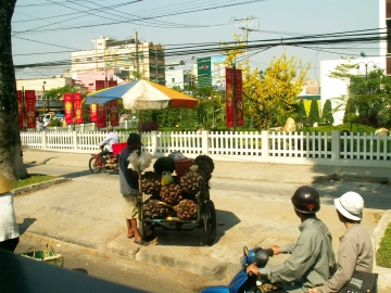 medium_vietnam3_930.jpg