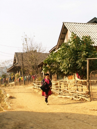medium_vietnam_100.2.jpg