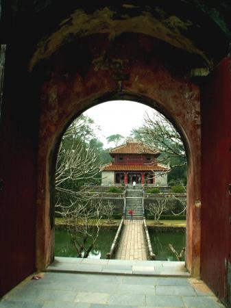 medium_vietnam_575.jpg
