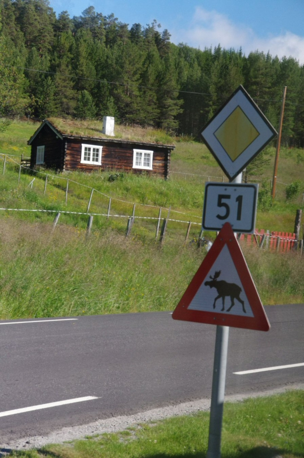 voyage, norvege, route des trolls