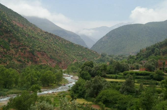 Maroc 1 407a.JPG
