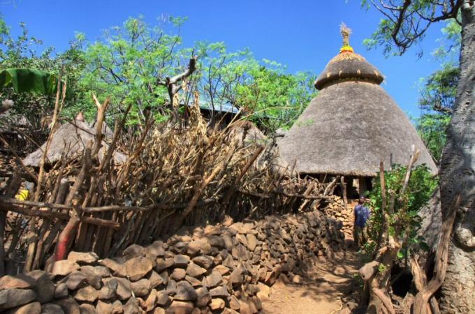 Ethio1pie 219a.jpg