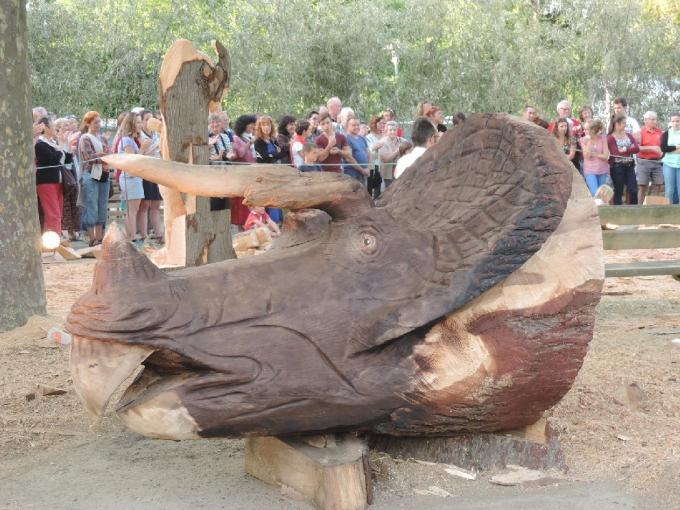 triceratops de maxence.jpg