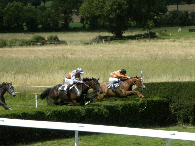 course, chevaux, combree
