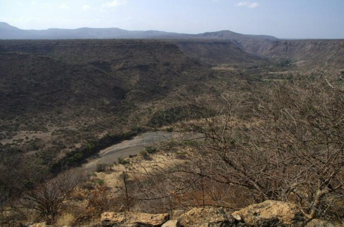 Ethio2pie 243a.jpg