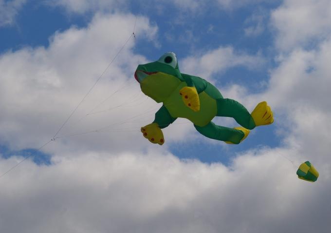 Cerfs-volants 046a.jpg