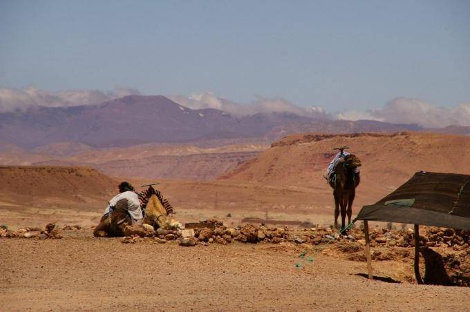Maroc 1 698.JPG