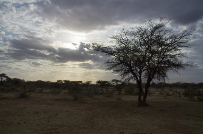 Ethio1pie 473a.jpg