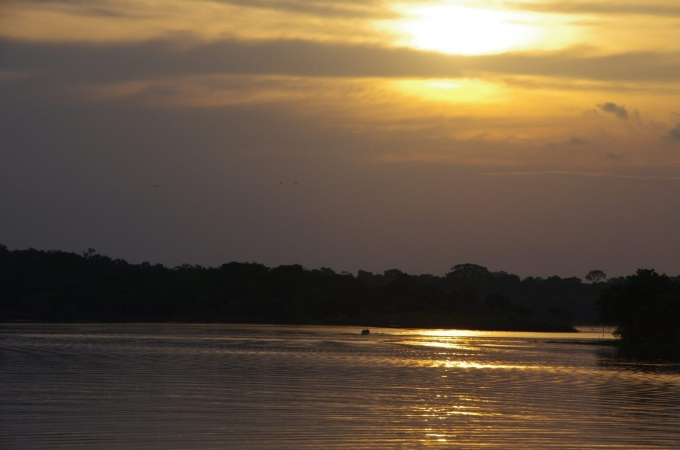 voyage, bresil, manaus, rio negro, amazone
