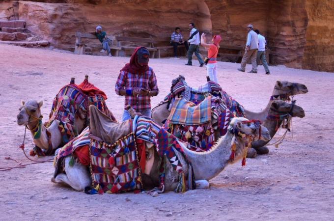 voyage,jordanie