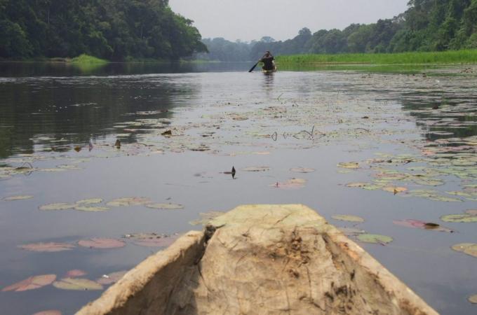 Cameroun 140b.jpg