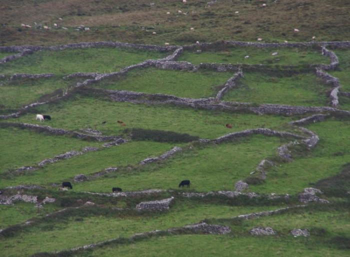 Irland1e 345a.jpg