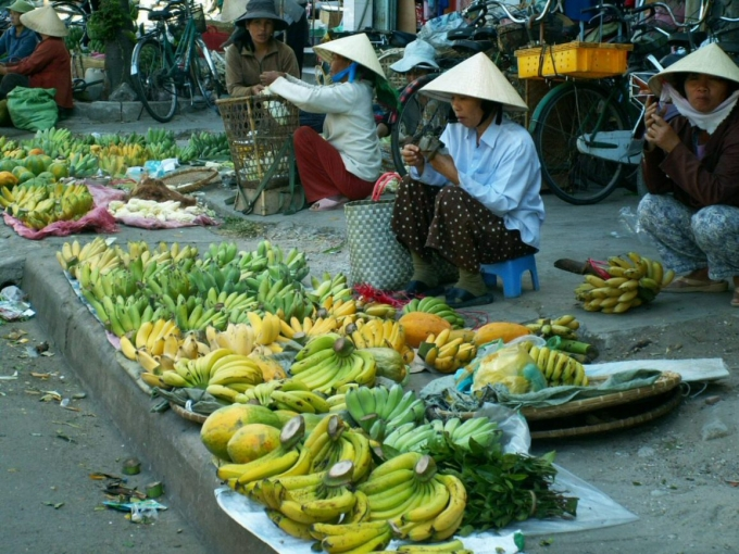 vietnam3 447.jpg