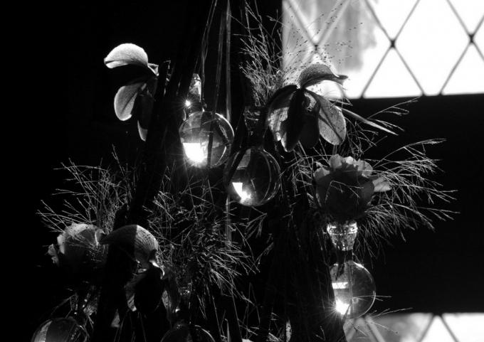 Floralies 131.JPG