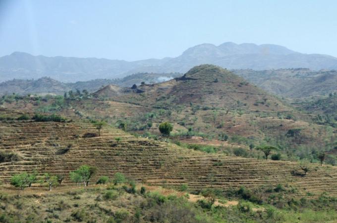 Ethio1pie 394a.jpg