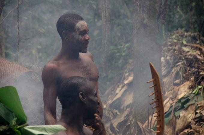 voyage, afrique, cameroun, dja, pygmées, baka