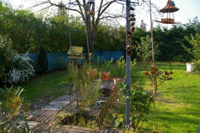 jardin2.jpg