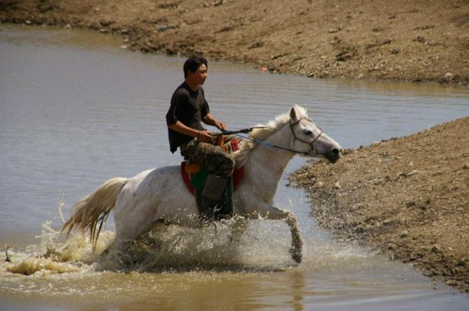 Mongolie 153a.jpg