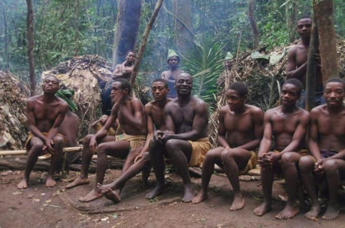 voyage, afrique, cameroun, pygmées, baka, dja