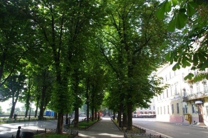 croisiere, ukraine, odessa