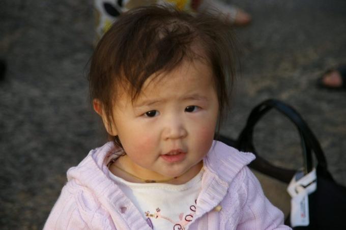Mongolie 458a.jpg