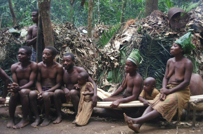 voyage, afrique, cameroun, pygmees