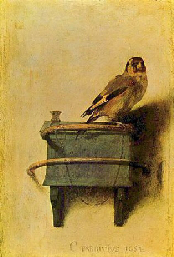Carel_Fabritius_-_The_Goldfinch.jpg