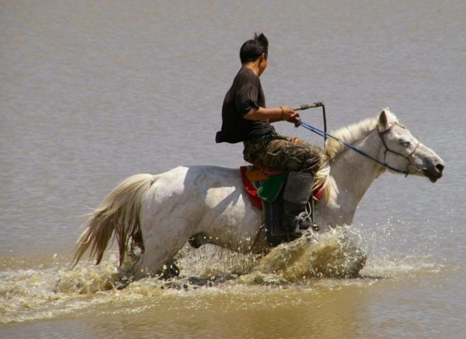 Mongolie 152b.jpg