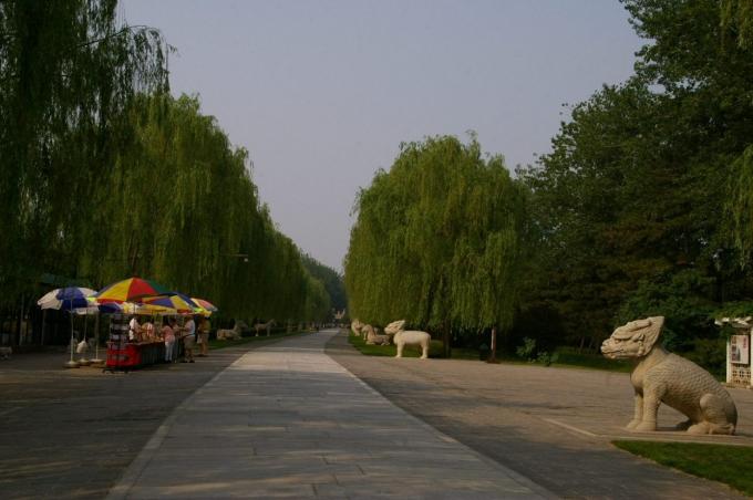 ming43.jpg