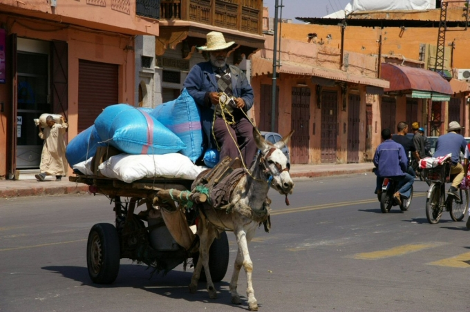 Maroc 1 262a.JPG