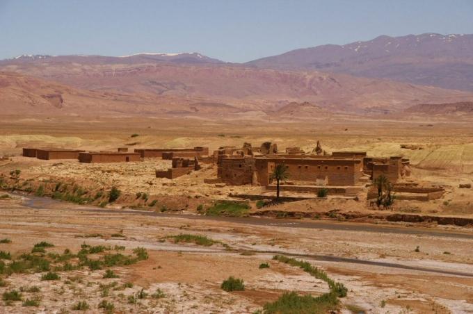 Maroc 1 696.JPG