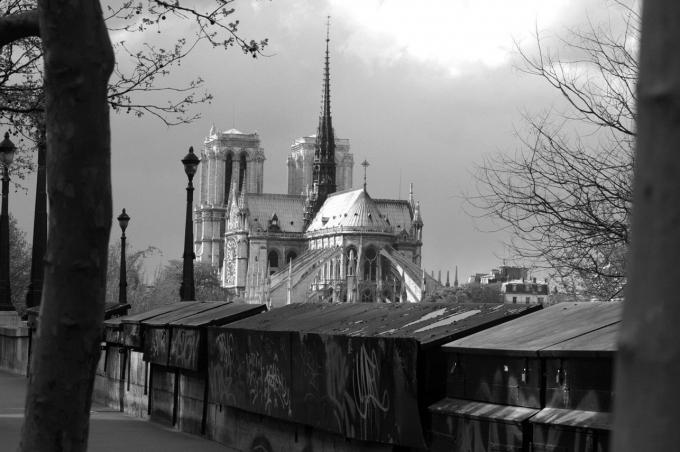 Paris 407a.jpg
