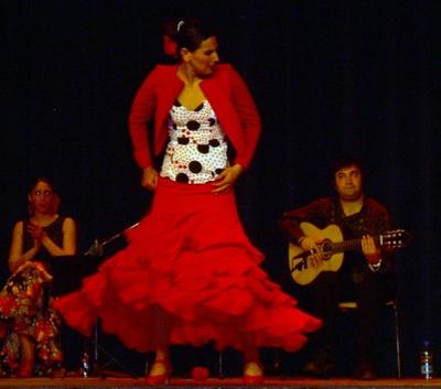 flamenco.jpg.jpg